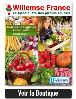 Willemse nouveaux catalogues jardin et potager et promos for Willemse jardin