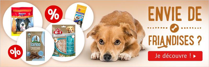 Cliquez ici pour voir toutes les offres pour chiens
