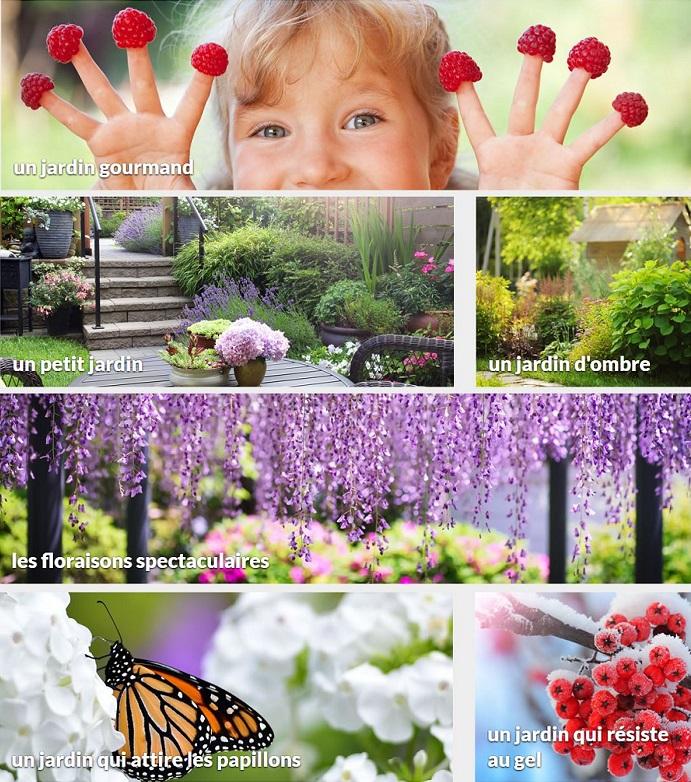 Cliquez ici pour voir les idées de jardin Willemse