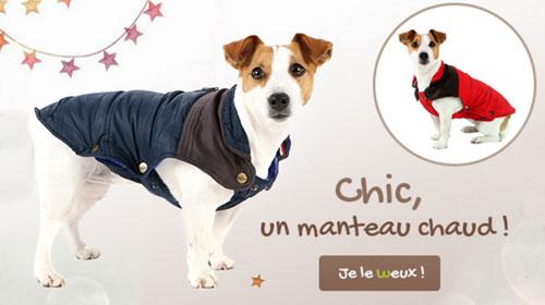 Manteau bien chaud pour chien