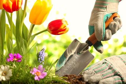 Tous les accessoires de jardin pour avoir la main verte !