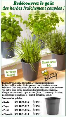 Apportez un peu de vert à votre cuisine !