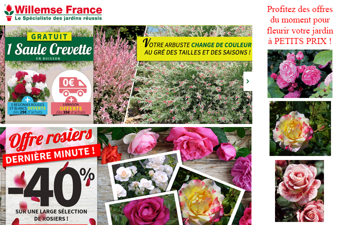 Willemse catalogue jardinerie for Catalogue jardinerie