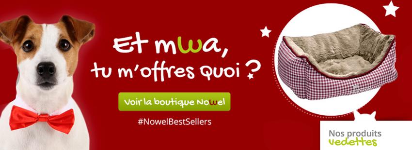 N'oubliez pas d'aller voir la boutique de Nowel !