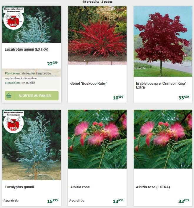 Du choix en matière d'arbres et d'arbustes
