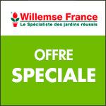 Willemse international vous offre 20€ dès 50€ d'achats