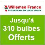 Willemse : vous offre 205 plantes dès 39€ d'achats.